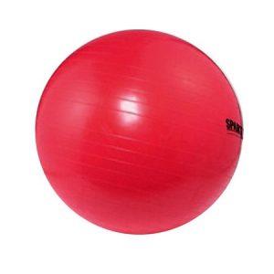 Poti folosi mingea gonflabila, 75 cm Spartan pentru recuperare, gimnsatica si exercitii fitness.